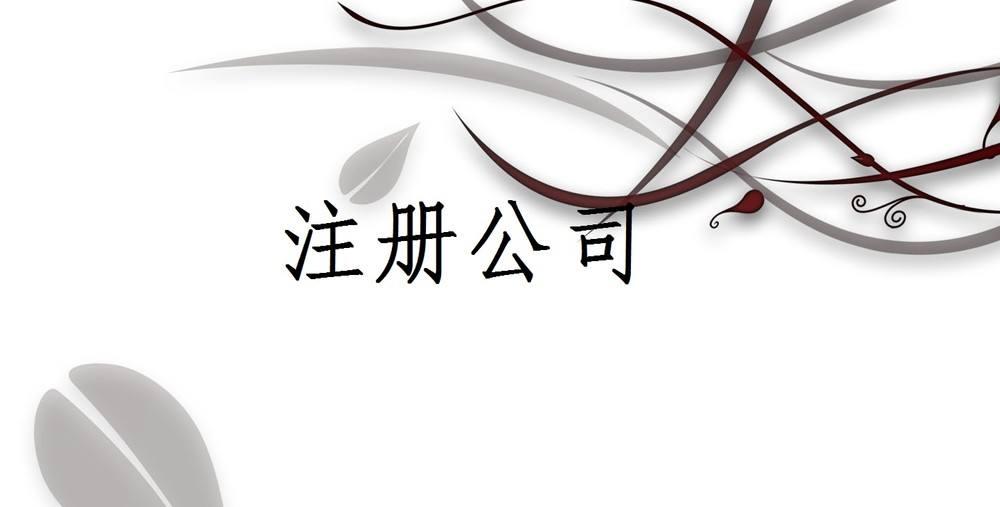 北京可以注册什么种类的公司